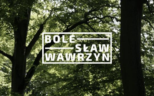 Bolesław Wawrzyn